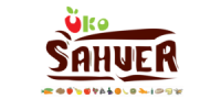 sahver logo